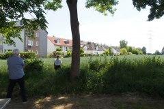 p-200527-120806-tb-boklimastadtgruen-r2120234.jpg