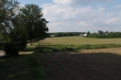 p-200527-160748-tb-boklimastadtgruen-r2120362.jpg