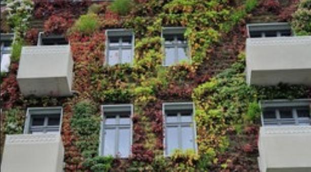 Macht die Städte grün – Konzepte für die Stadtbegrünung (WDR audio Feature)